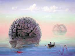 Pendant la séance de rêve, le cerveau droit accède au monde onirique.